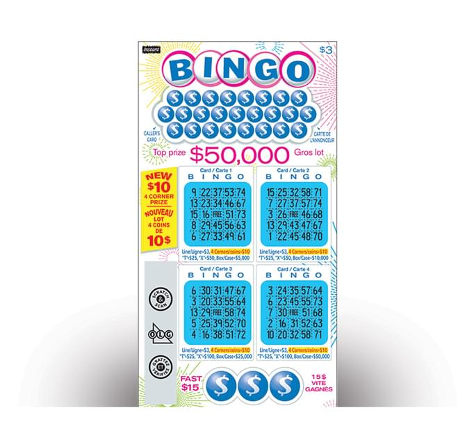 INSTANT BINGO 3022 ticket