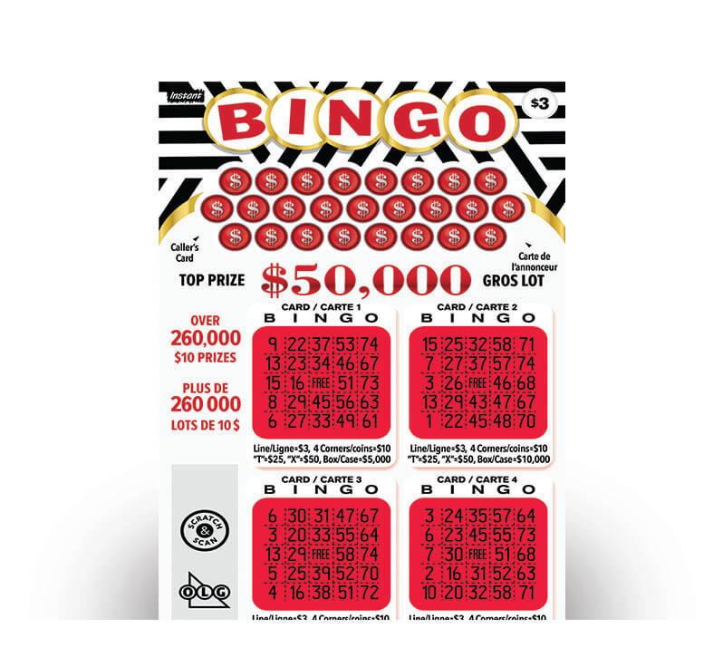 Instant Bingo 3029 ticket